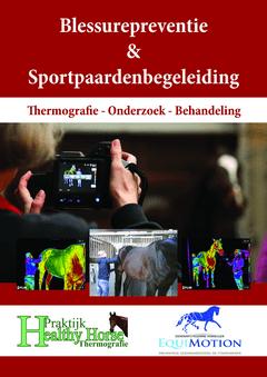 blessurepreventie en sportpaardenbegeleiding