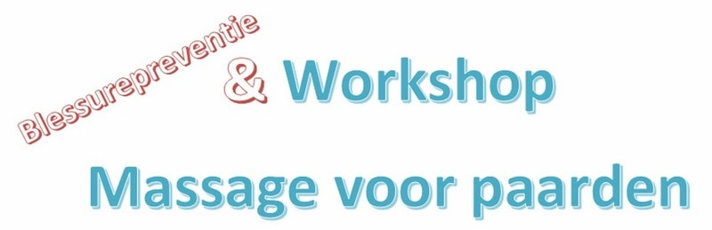 workshop massage bij paarden